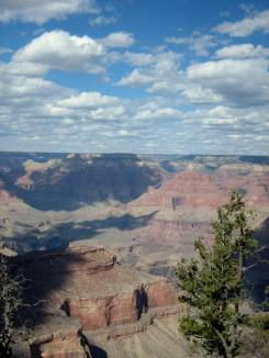 Grand Canyon National Park. AZ. Photo by Y. Youngs